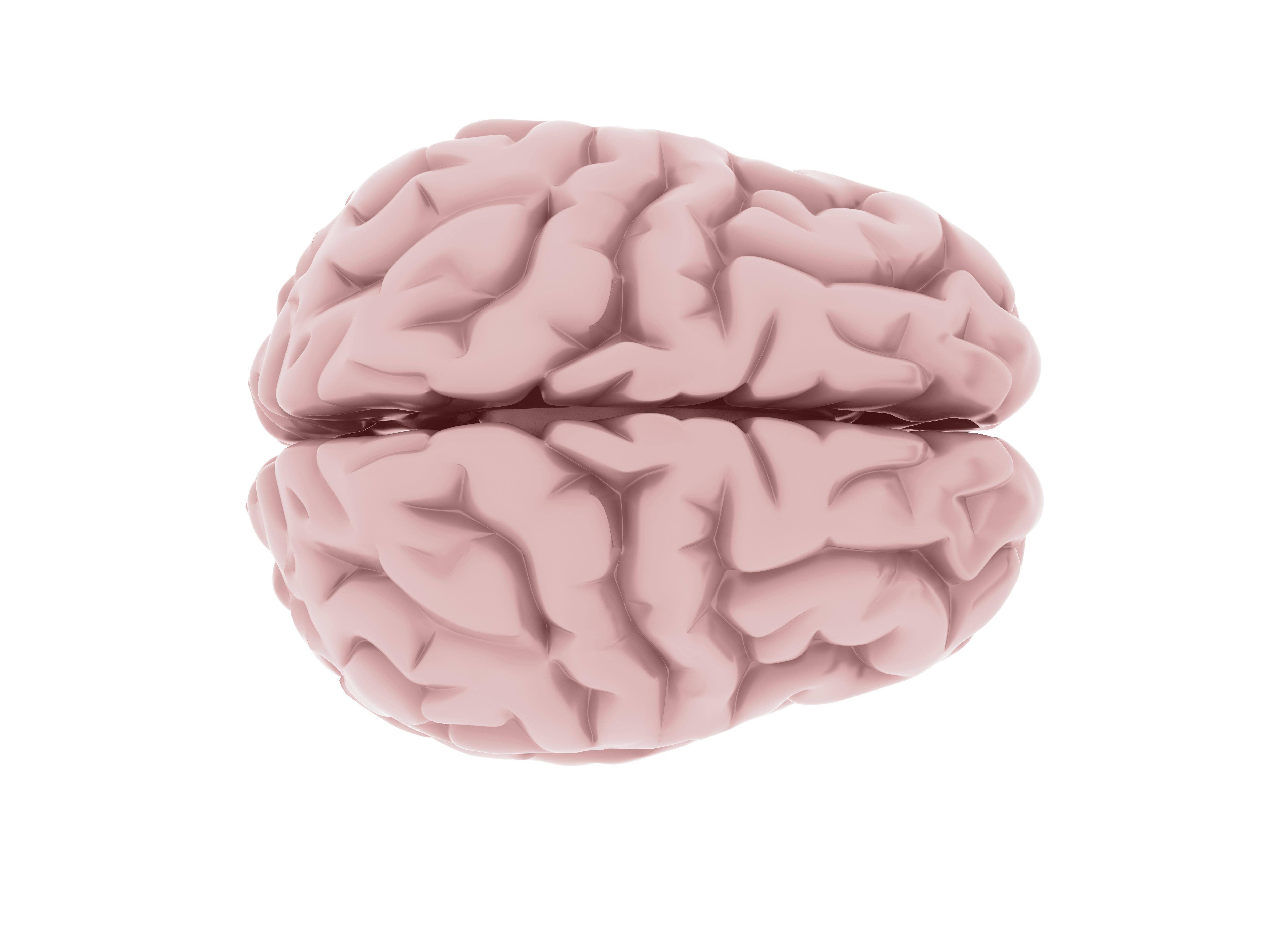 neuromitos gijon neuropsicologia infantil